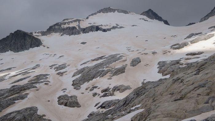 Czerwony śnieg, zakwity glonów śnieżnych. fot. K. Zawierucha.
