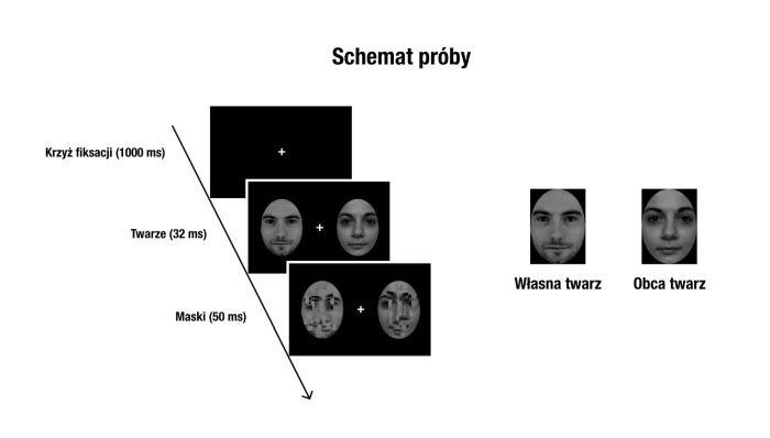 Schemat doświadczenia zrozpoznawaniem twarzy źródło: Michał Bola zzespołem