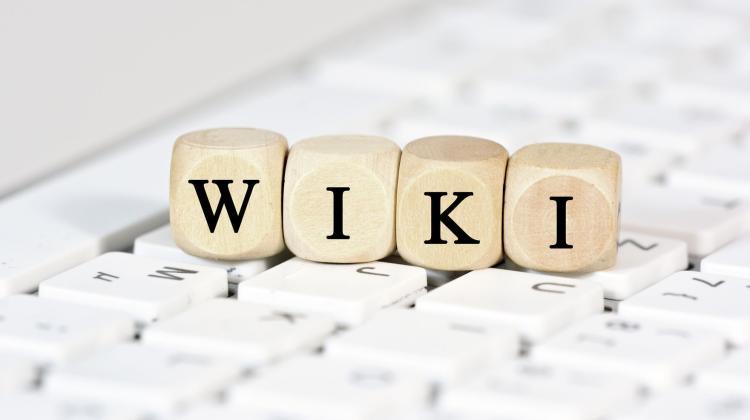 d572fcc06f O wyłączeniu polskiej Wikipedii zdecydowało ok. 30 osób