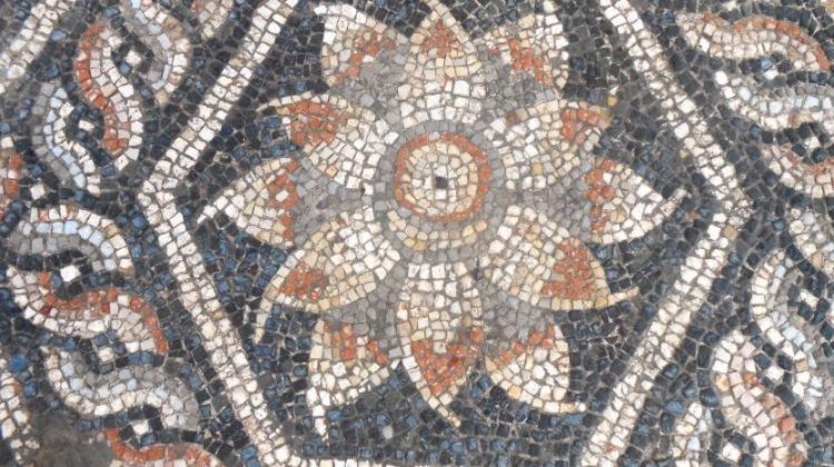 Mozaika odkryta w Aleksandrii. Fot. R.Kucharczyk/ PCMA UW