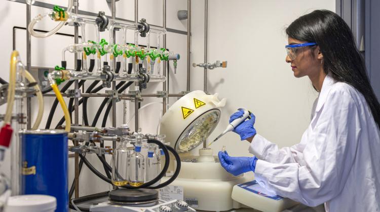 W Instytucie Chemii Fizycznej PAN prowadzone są prace badawcze nad  poprawą wydajności perowskitowych powierzchni solarnych- ekologicznych,  tanich i uniwersalnych w zastosowaniu. (Źródło: IChF PAN, Grzegorz  Krzyżewski)